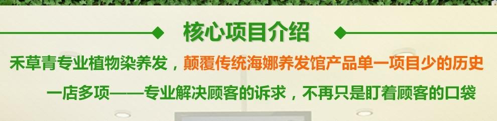 禾草青專業植物染養發_核心項目