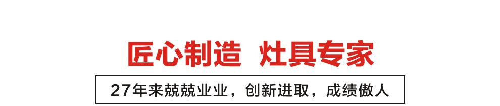火王厨电_品牌荣誉