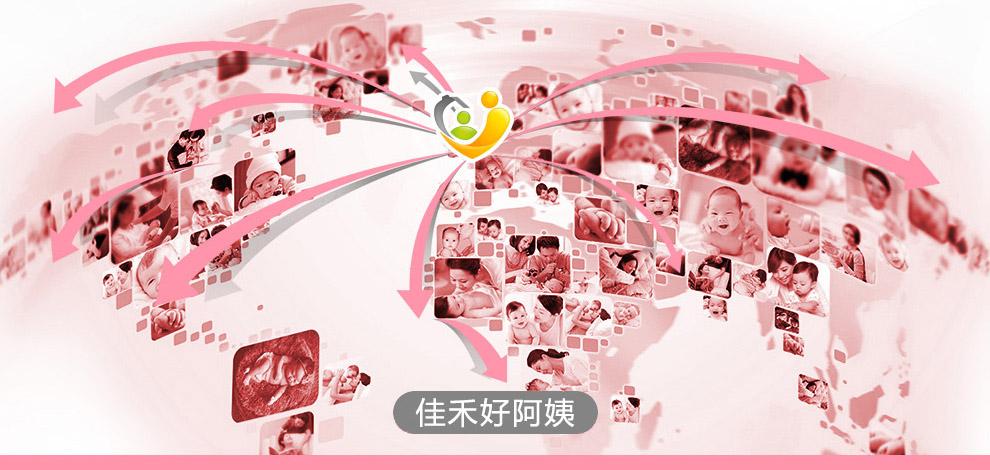 佳禾国际家政--8万家庭的口碑见证