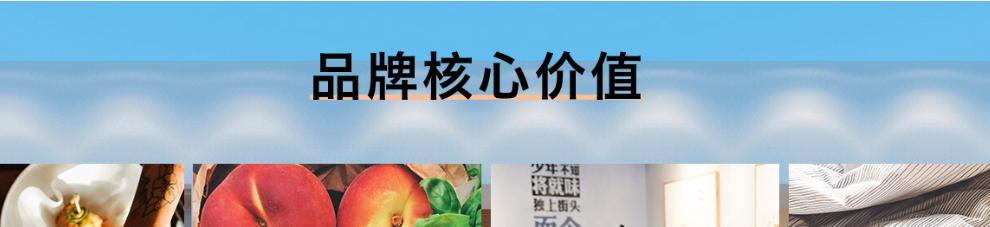 將就中式快餐_品牌核心價值