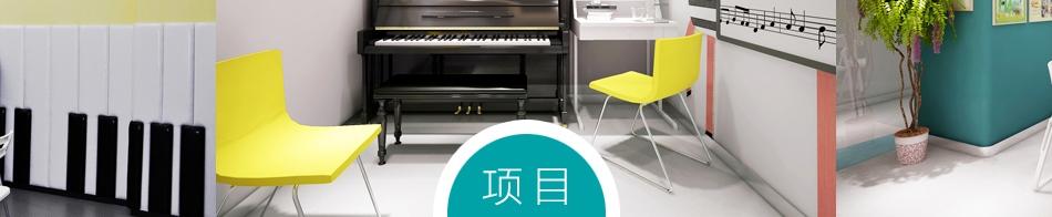 建勋钢琴教育——项目前景