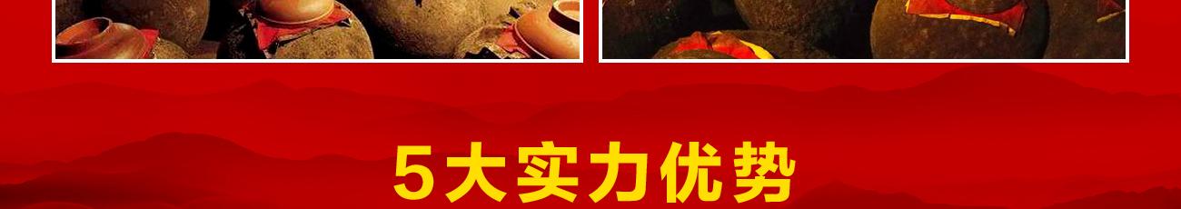 郎酒_5大加盟优势