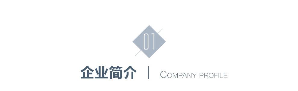 蓝古威--企业简介