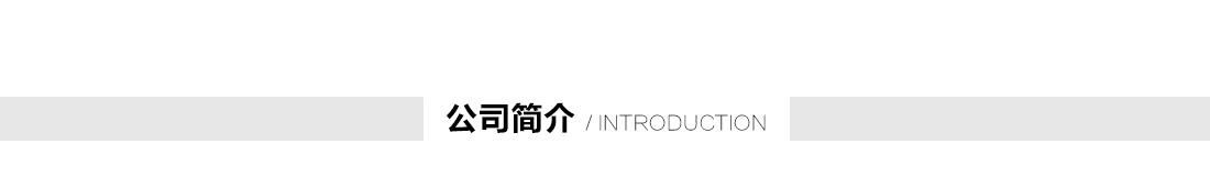 菱慧国际--公司简介