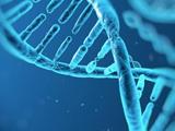 才能天赋基因检测
