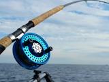 龍王恨依肯國際釣具漁具