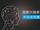 智力星全脑教育
