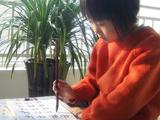 金阳光美术书法培训