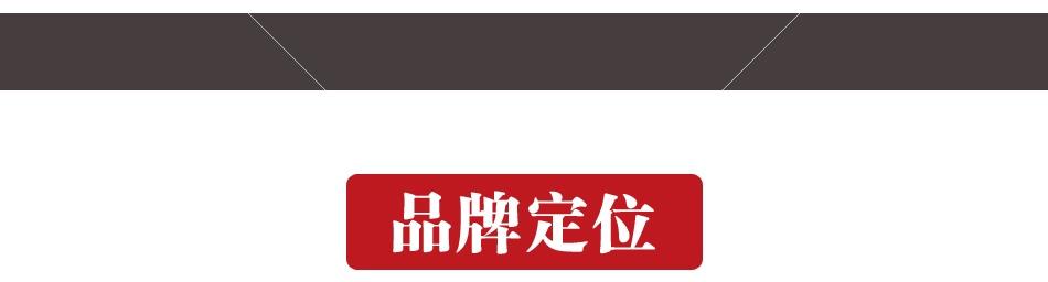 青藤酒店集团——南苑e家品牌定位