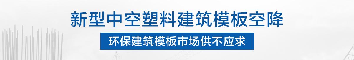 磐汩中空塑料模板_市場前景