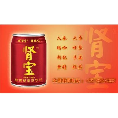 肾宝植物能量饮料250ml  健康饮品